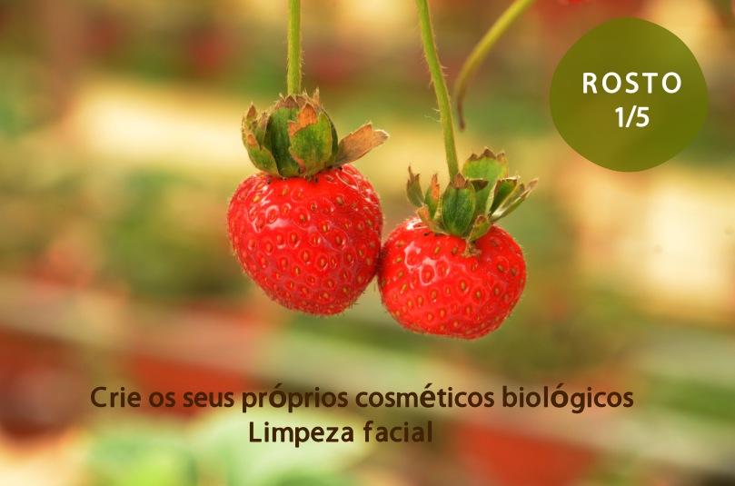 Aventure-se a criar cosméticos biológicos - Rosto 1/5
